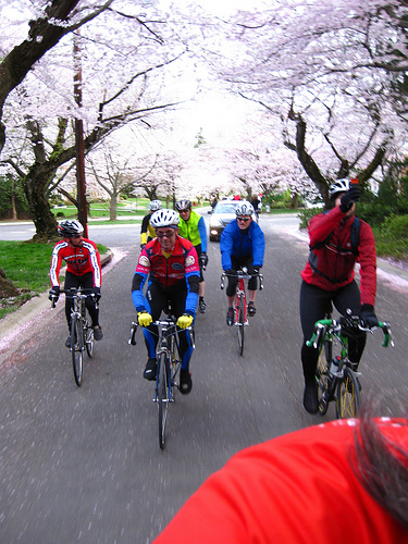 Cycling Could Replace Golf as the Networking Sport