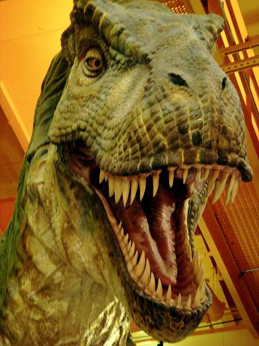 50 Shades of Tar Pits: Students Make Big Bucks on Dinosaur Romance Novels