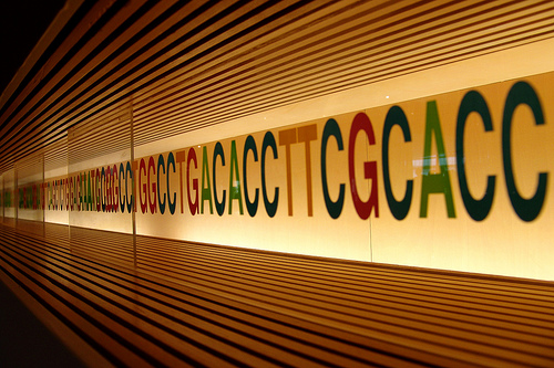 What You Need to Know About Genetic Information Discrimination
