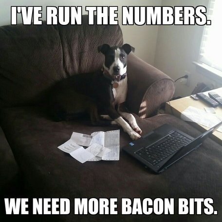 Workplace Lulz: Bacon Bits Are the Key to Career Success