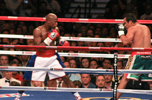Floyd Mayweather Tops Fortunate 50