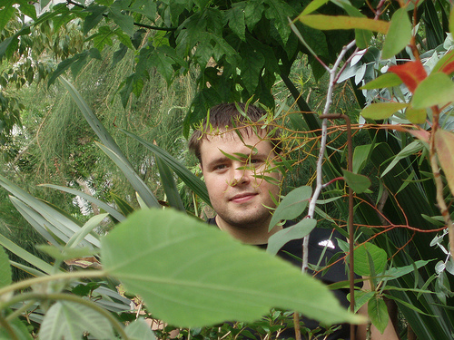 Hiding in bushes