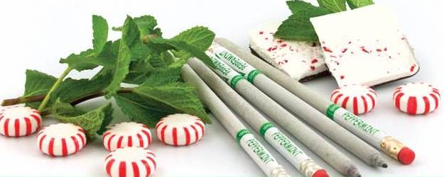 Can Peppermint Pencils Help You Concentrate?