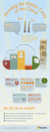 Avoiding Hidden Costs of The Cloud [infographic]