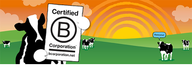 Ben & Jerry's Becomes Certified B Corporation