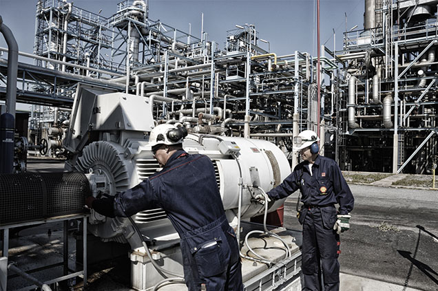 Petroleum Engineering top 10 business majors
