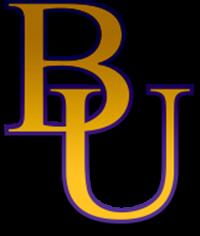 Bellevue University - Bellevue, NE logo