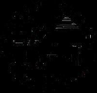 Boise State University (BSU) logo