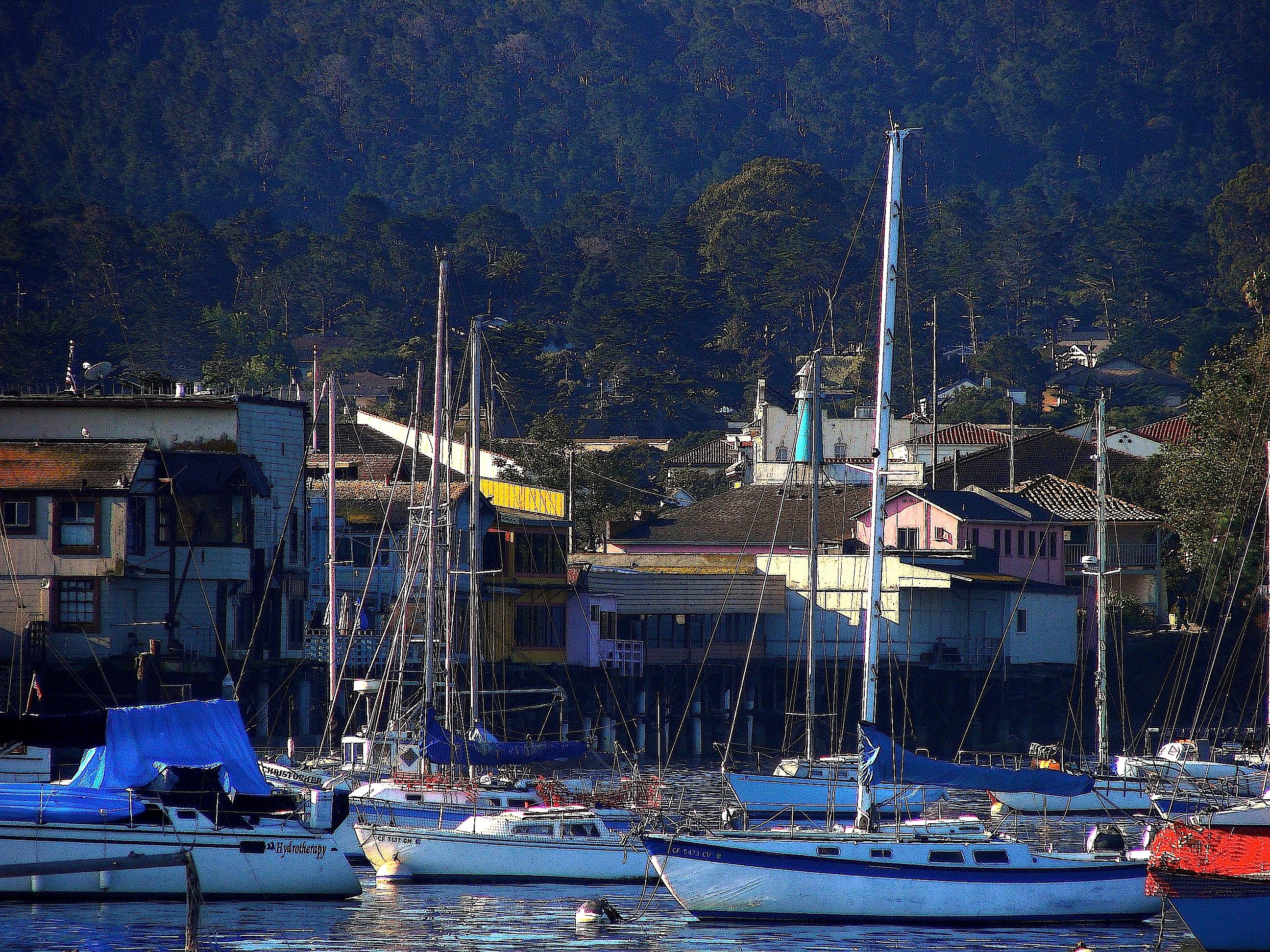 Assistant Buyer Salary in Monterey, California